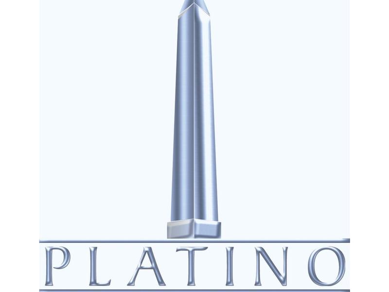 Grande logo platino